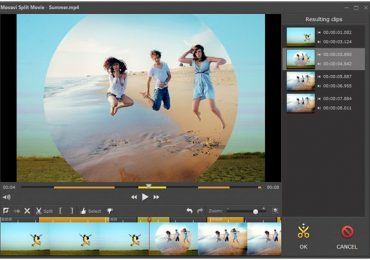 Utilize The Advanced Characteristics Of Movavi Video Software