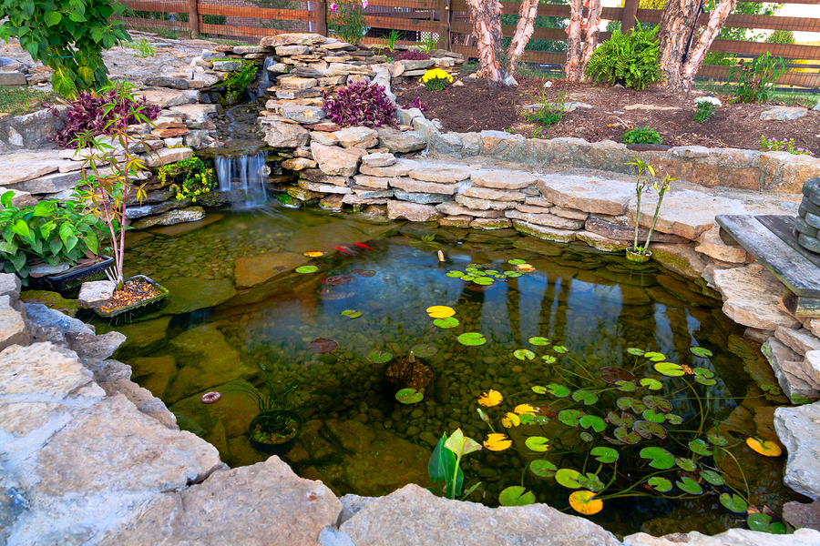 Essential Practices for Controlling Algae in Your Pond