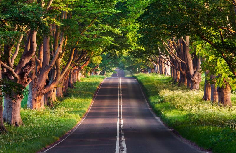 Road Surfacing ideas